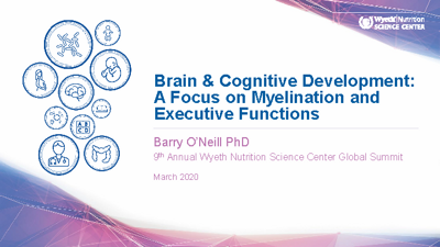 Brain & Cognitive Development: A Focus on Myelination and Executive Functions